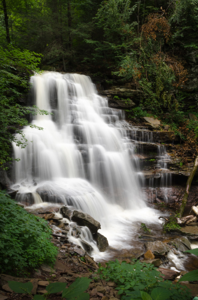 Ricketts_Glen_State_Park_900px-20